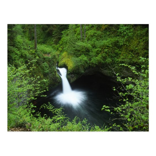 Punchbowl Falls on Eagle Creek, Columbia River Postcard