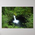 Punchbowl Falls on Eagle Creek, Columbia River Poster