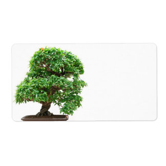 Punica Granatum bonsai tree Shipping Label