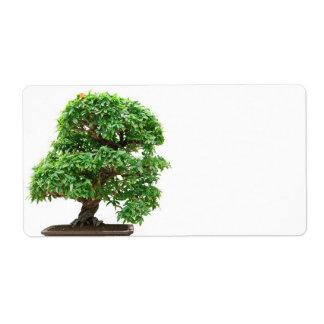 Punica Granatum bonsai tree Shipping Label