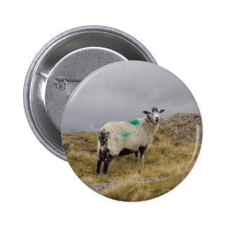 Punk sheep 6 cm round badge