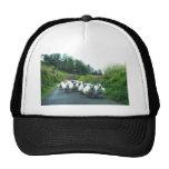 Punk Sheep on the Beara Peninsula Ireland Hat