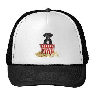 Pup-Corn anyone Hat