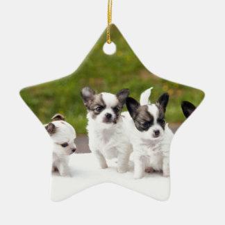 puppies-453532.jpg ceramic star decoration