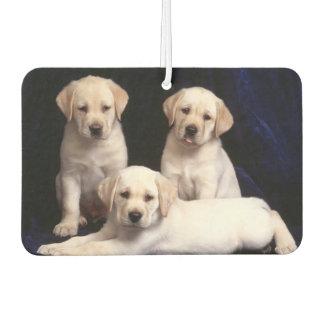 Puppies Air Freshner