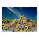 PUPPIES AND FLOWERS (GOLDEN RETRIEVERS) CARDS