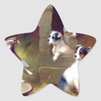 Puppies and pigeon star sticker