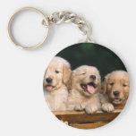 puppies basic round button key ring