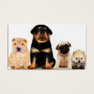 Puppies Business card
