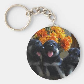 Puppies Keychain