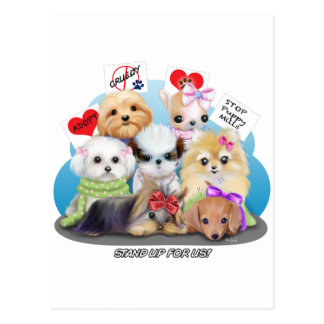 Puppies Manisfesction Postcard