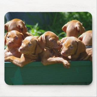 Puppies Mouse Mat