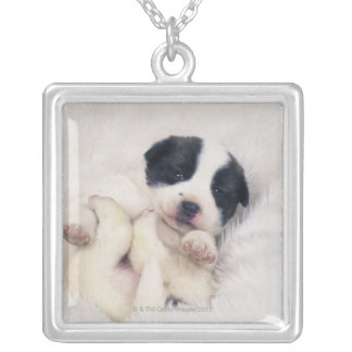 Puppy 2 silver plated necklace