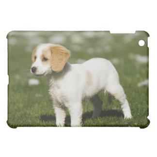 Puppy 3 iPad mini case