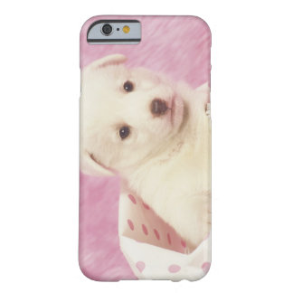 Puppy 5 barely there iPhone 6 case
