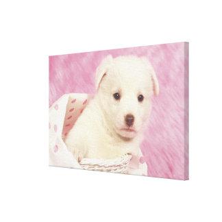 Puppy 5 canvas print