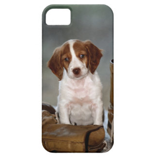 Puppy and Boots iPhone 5 Cases