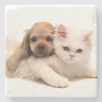 Puppy and Kitten Stone Coaster