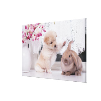 Puppy and Lop Ear Rabbit Canvas Print