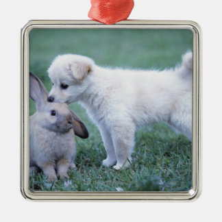 Puppy and Lop Ear Rabbit on lawn Christmas Ornament