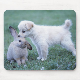Puppy and Lop Ear Rabbit on lawn Mouse Pad