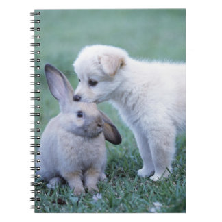 Puppy and Lop Ear Rabbit on lawn Notebook