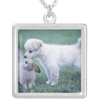 Puppy and Lop Ear Rabbit on lawn Silver Plated Necklace