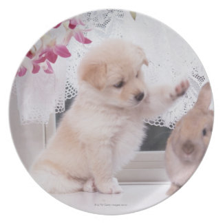 Puppy and Lop Ear Rabbit Plate