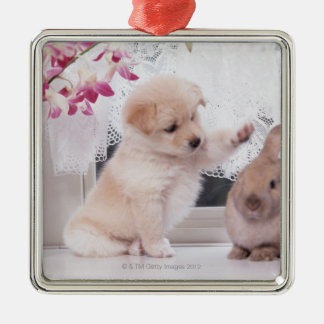 Puppy and Lop Ear Rabbit Silver-Colored Square Decoration