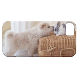 Puppy and rabbit iPhone 5 cover
