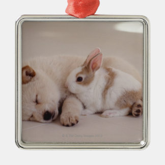 Puppy and Rabbit Silver-Colored Square Decoration