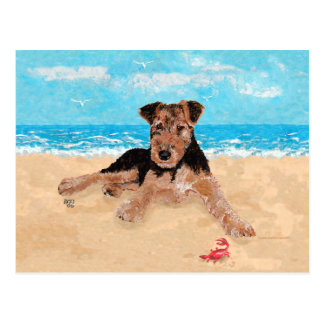 Puppy at the Beach Postcard