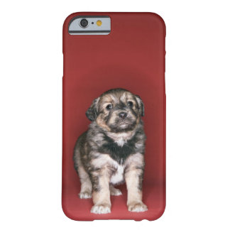 Puppy Barely There iPhone 6 Case