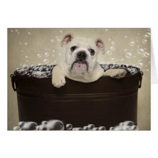 Puppy bath greeting card