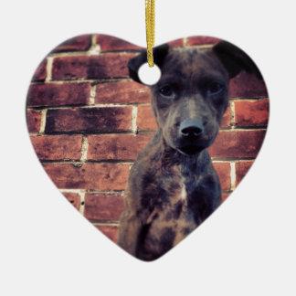 Puppy & brick work photo design ceramic heart decoration