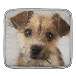 Puppy (Canis familiaris) iPad Sleeve