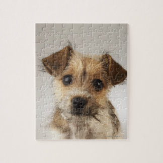 Puppy (Canis familiaris) Jigsaw Puzzle