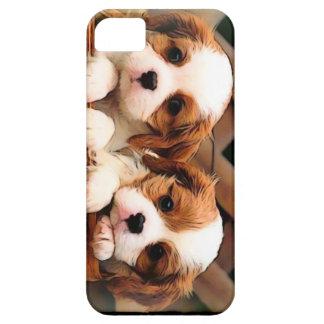 Puppy Case