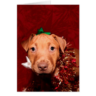 Puppy Christmas help Greeting Card