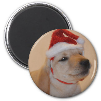 Puppy Christmas Refrigerator Magnets