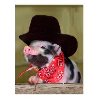 Puppy Cowboy Baby Piglet Farm Animals Babies Postcard