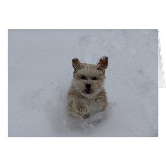 Puppy dashing through the snow greeting card