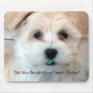 Puppy - Did You Brush Your Teeth Today? Mouse Mat