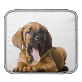 Puppy Dog 2 iPad Sleeve