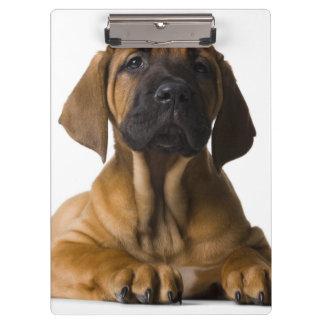 Puppy Dog Clipboard