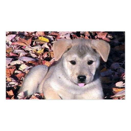 Puppy Dog In Fall Leaves Business Card