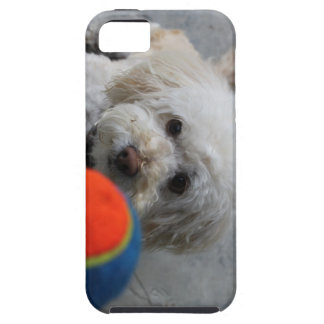 Puppy - Dog  iPhone cover -Puppy Love Tough iPhone 5 Case