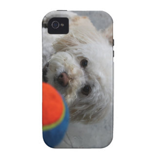 Puppy - Dog  iPhone cover -Puppy Love iPhone 4/4S Cases