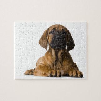 Puppy Dog Jigsaw Puzzle