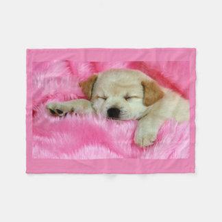 Puppy Dog Sleeping on Pink Fleece Blanket